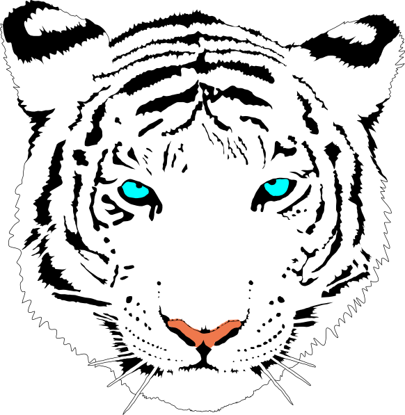 Bengal Tiger white Clip Art at Clker vector clip