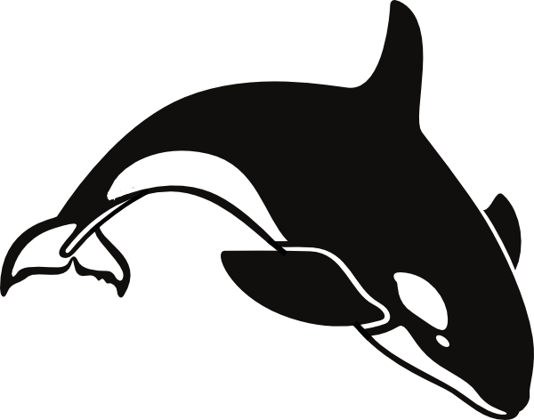 shamu coloring pages - orca clip art at vector clip art online
