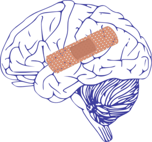 Brain With Bandaid Clip Art