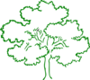 Oak Tree Green Outline Full Frame Clip Art