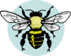 Little Bee Clip Art