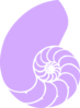 Purple Nautilus Shell Clip Art