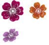 Three Wild Roses Clip Art