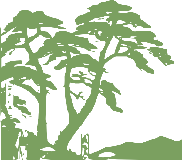 free clipart jungle trees - photo #6