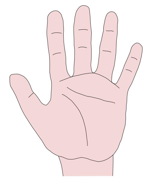 Hand 23 Clip Art at Clker.com - vector clip art online ...