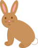 Brown Rabbit Clip Art