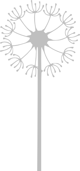 Clip Art Dandelion Clipart gray dandelion clip art at clker com vector online download this image as