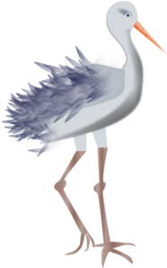 Bird With Legs Clip Art