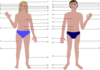 Cartoon Human Body Parts Clip Art