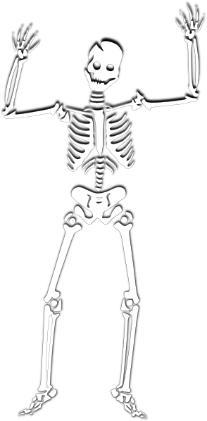 scary skeleton 2 clip art at clker com