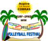 Cobras Volleyball Festival Clip Art
