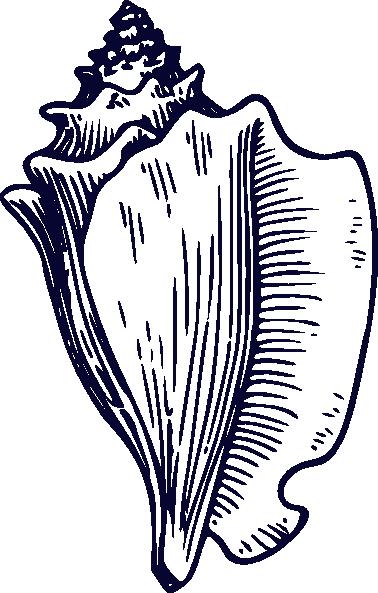 navy blue shell clip art at clker com vector clip art online rh clker com Sea Shell Clip Art Shell Clip Art to Print