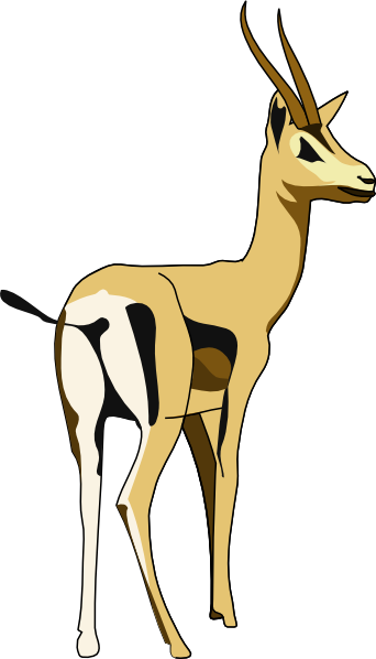 clipart springbok - photo #21