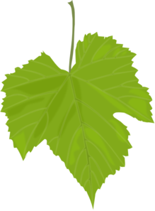Grape Leaf Clip Art