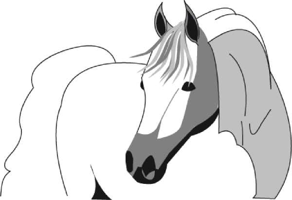 Free horse heads coloring pages