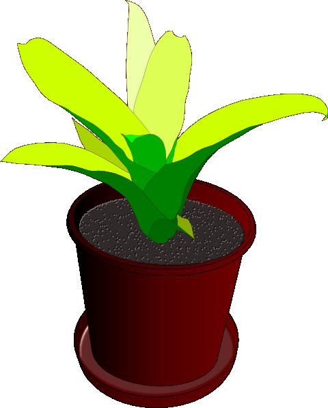 Potted Plant Clip Art at Clker.com - vector clip art ...