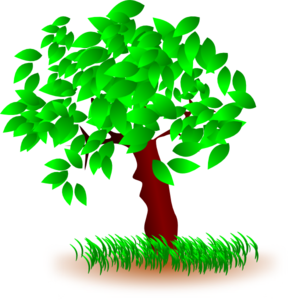 Tree With Large Leaves Clip Art
