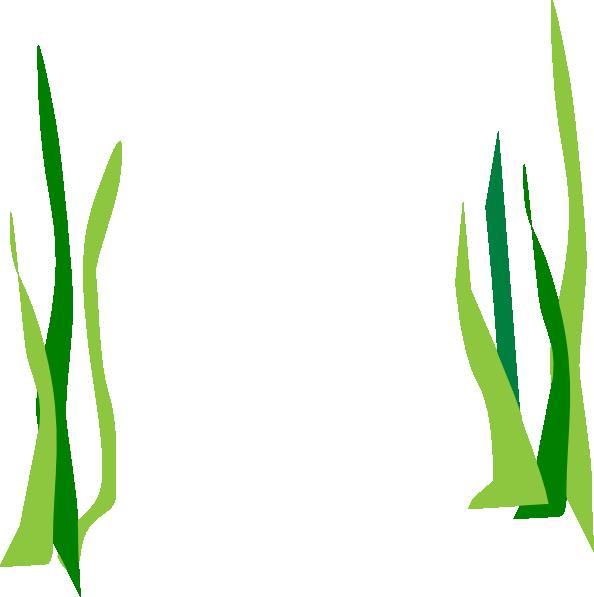 Cartoon Seaweed Clipart Green Reeds Cli...