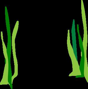 green reeds clip art at clker com vector clip art online royalty rh clker com seaweed clipart gif seaweed clipart transparent