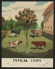 Typical Cows Clip Art