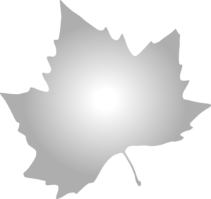 Grey Maple Leaf Clip Art