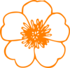 Orange Buttercup Flower Clip Art