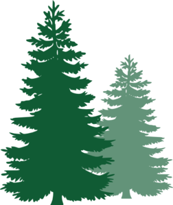 pine trees clip art at clker com vector clip art online royalty rh clker com pine tree clipart images pine tree clipart silhouette