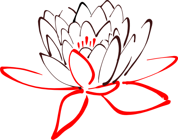 Pink Flower Line Drawing : Red lotus flower drawing pixshark images