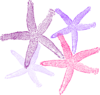 Starfish Prints Purplish Clip Art