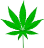 Legalizee It Clip Art