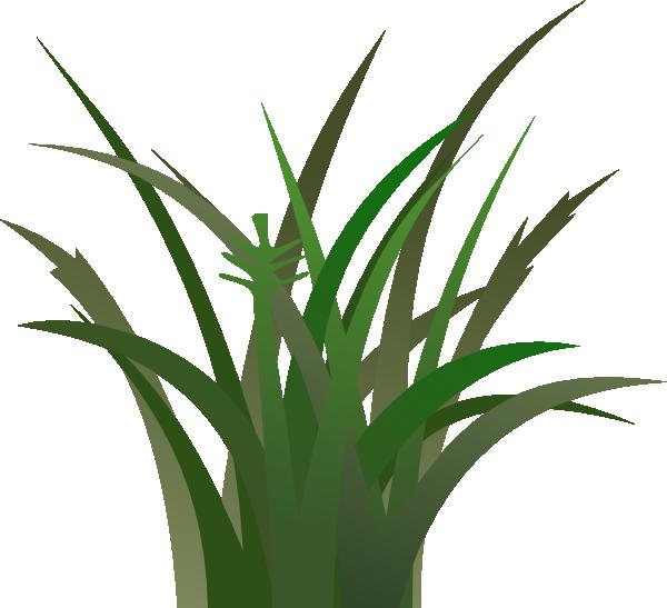 free vector clipart grass - photo #39