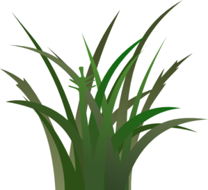 green grass clip art at clker com vector clip art online royalty rh clker com  green grass clipart free