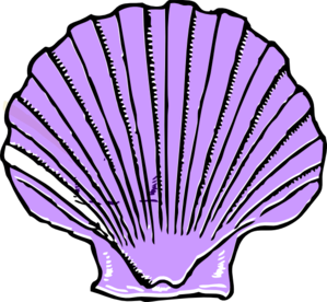 purple shell clip art at clkercom vector clip art