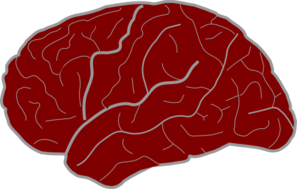 Red Brain Clip Art