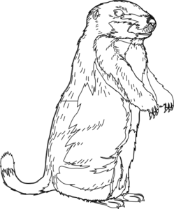 Groundhog Blank Clip Art at Clker.com - vector clip art online ...