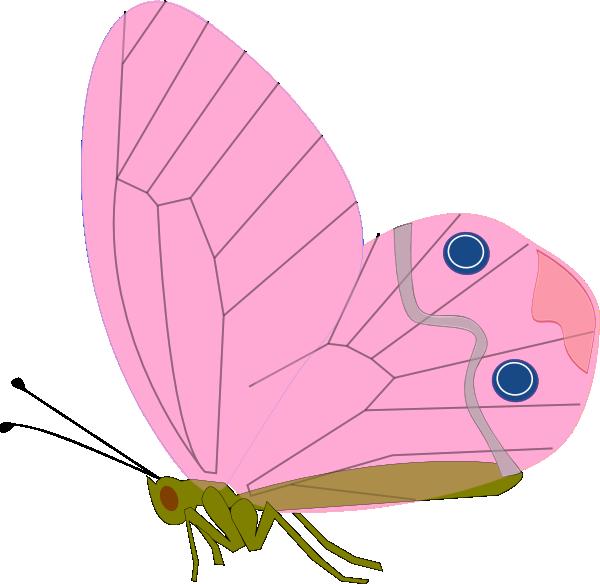 Pink Butterfly Clip Art at Clker.com - vector clip art online, royalty ...