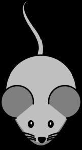 Transgenic Mouse Clip Art At Clker Com Vector Clip Art