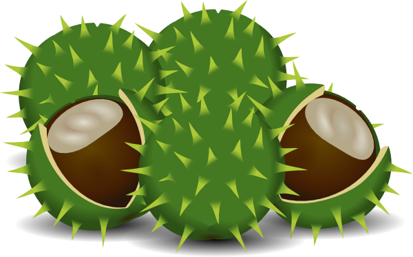 fall chesnut clip art at clker com vector clip art online  royalty free   public domain green leaf border clip art watercolor green leaf clip art free download