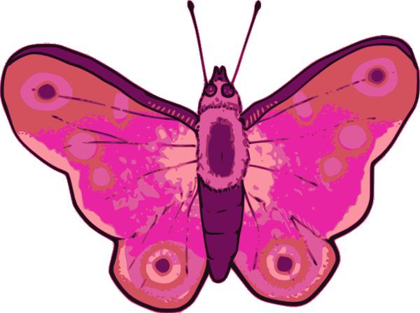 Pink Butterfly Art