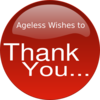Red Thank You Clip Art