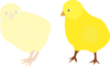 Chicks Figure Color Clip Art