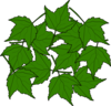 Maple Leaves Clip Art