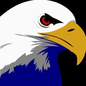 bald eagle clip art at clker com vector clip art online royalty rh clker com free bald eagle clipart american bald eagle clipart