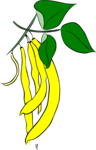 Yellow French Bean Clip Art