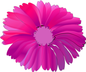 Pink Flower With Black Background Clip Art