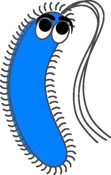 bacteria blue funny clip art at clker com