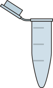 Empty Open Eppendorf Tube Clip Art