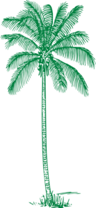 Green Palm Tree Clip Art