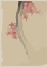 [unidentified, Possibly A Tree Branch With Red Star-shaped Leaves Or Blossoms] Clip Art