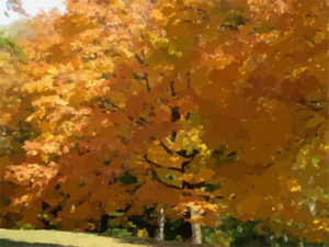 Trees Fall Colors Clip Art
